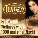 Wellness & more GmbH logo