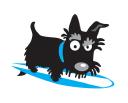 STEVEN RONALD WILSON Logo